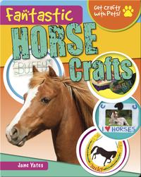 Fantastic Horse Crafts