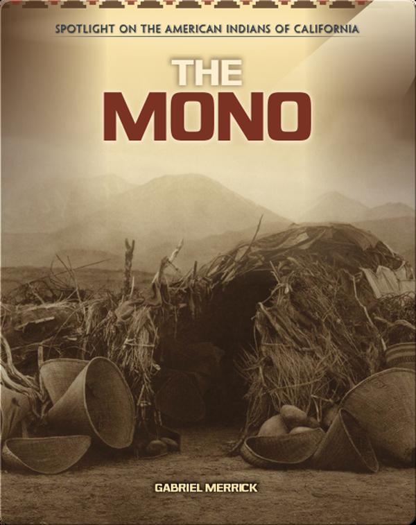The Mono