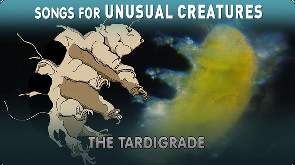 Songs for Unusual Creatures: The Tardigrade
