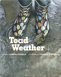 Toad Weather