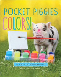 Pocket Piggies Colors!