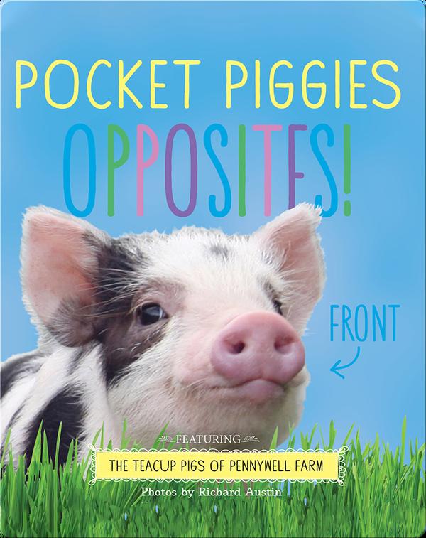 Pocket Piggies Opposites!