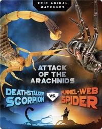 Deathstalker Scorpion vs. Funnel-Web Spider