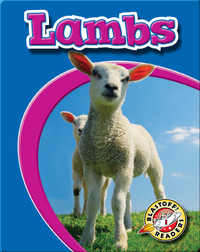 Lambs: Watch Animals Grow
