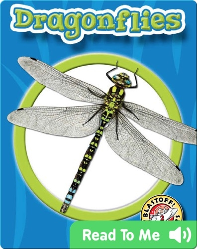 Dragonflies: World of Insects