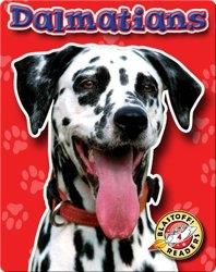 Dalmatians: Dog Breeds
