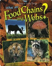 What are Food Chains and Webs?