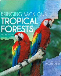 Bringing Back Our Tropical Forests