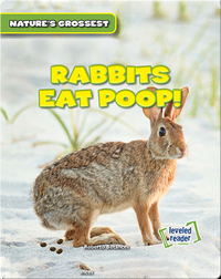 Nature's Grossest: Rabbits Eat Poop!