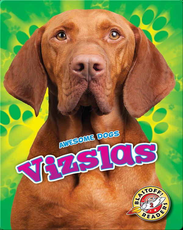 Awesome Dogs: Vizslas