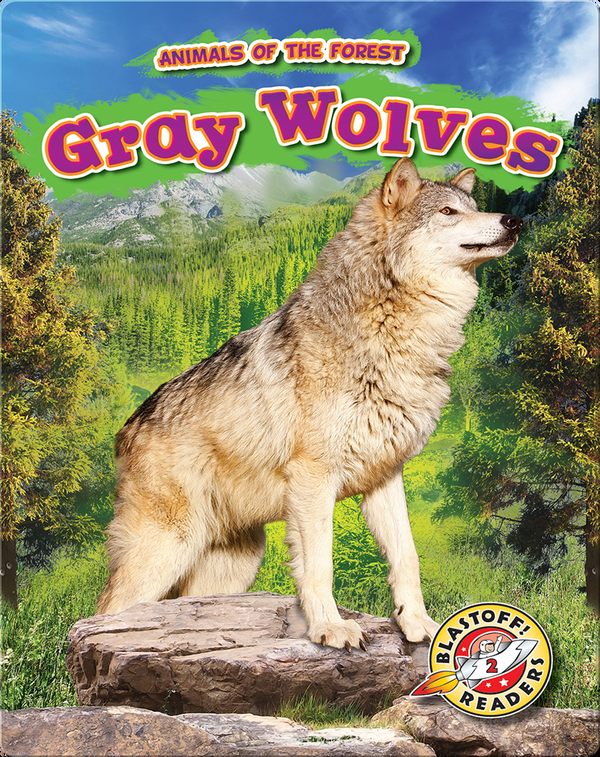 Animals of the Forest: Gray Wolves