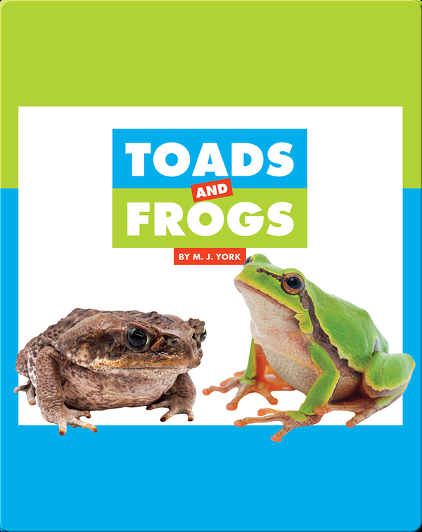 Comparing Animal Differences: Toads and Frogs