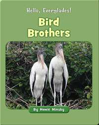 Hello, Everglades!: Bird Brothers