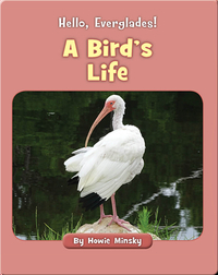 Hello, Everglades!: A Bird's Life