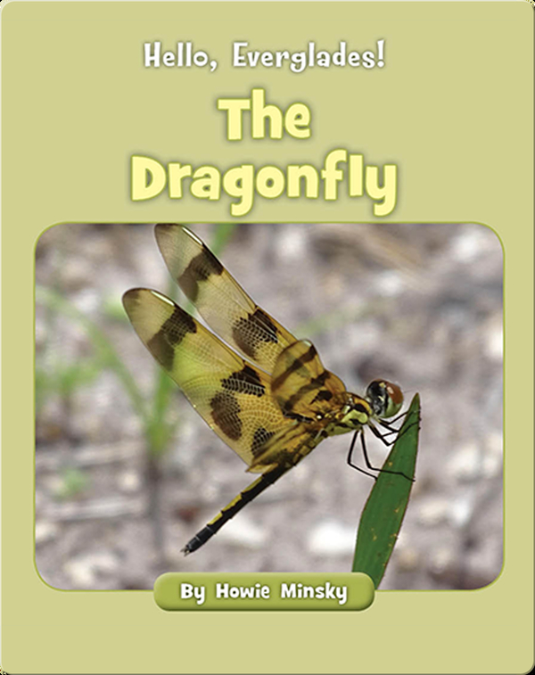 Hello, Everglades!: The Dragonfly