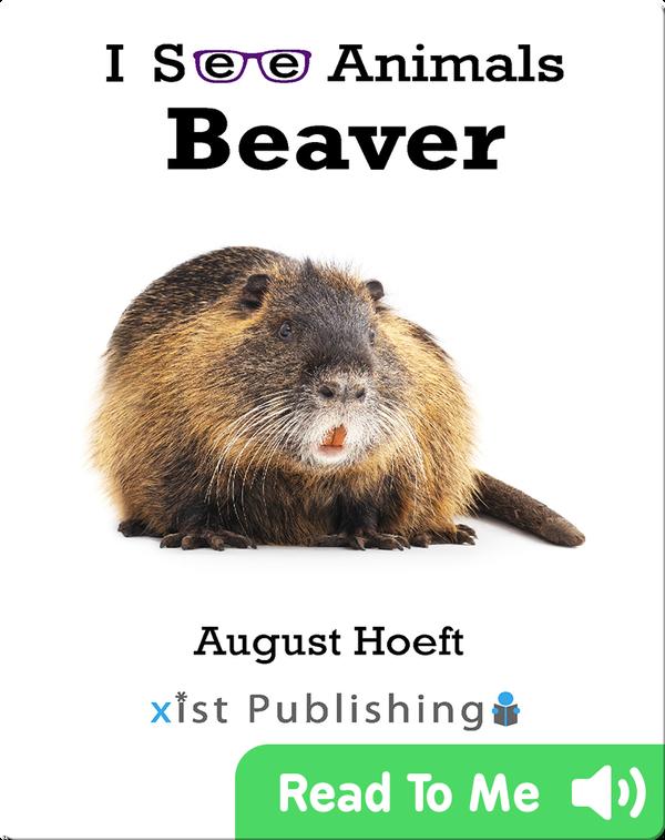 I See Animals: Beaver