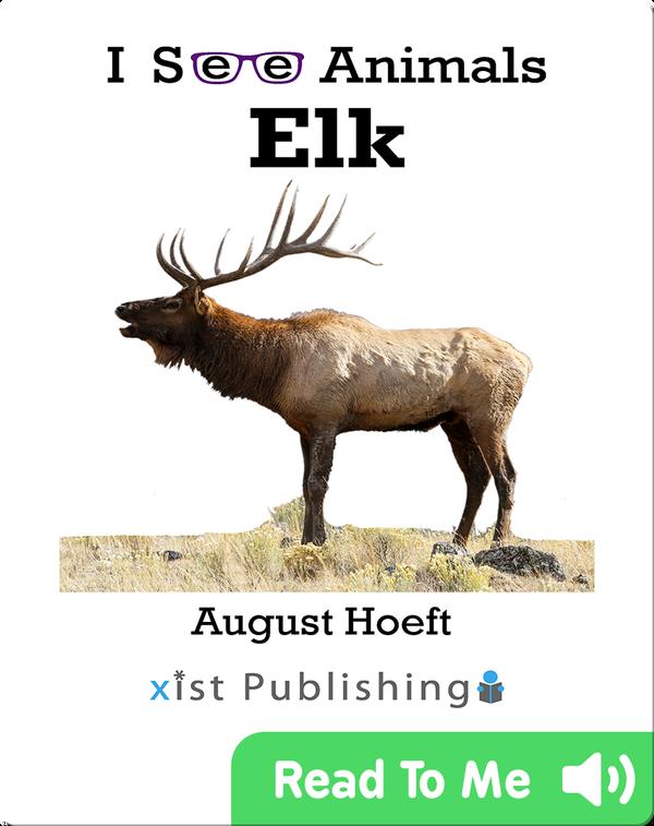I See Animals: Elk