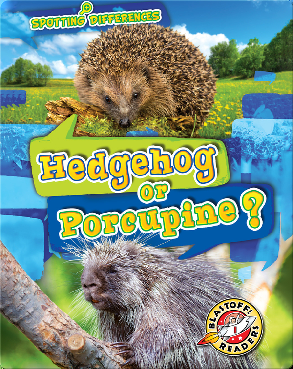 Spotting Differences: Hedgehog or Porcupine?