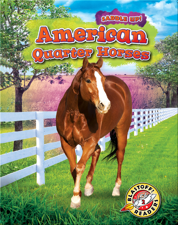 Saddle Up!: American Quarter Horses