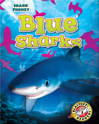 Shark Frenzy: Blue Sharks