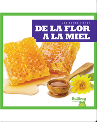 De la flor a la miel (From Flower to Honey)