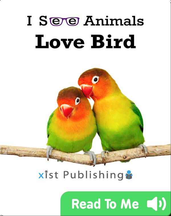 I See Animals: Love Bird