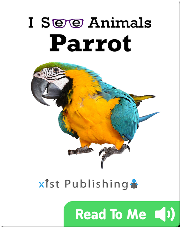 I See Animals: Parrot