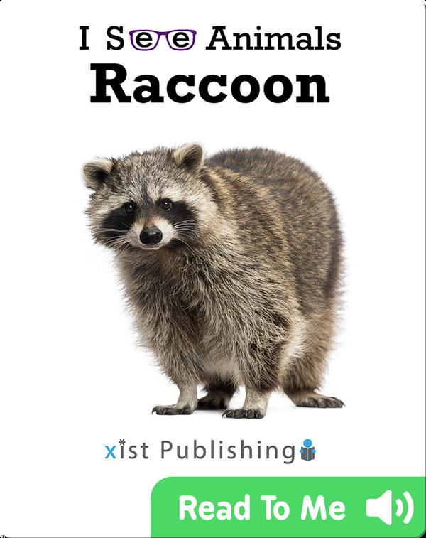 I See Animals: Raccoon