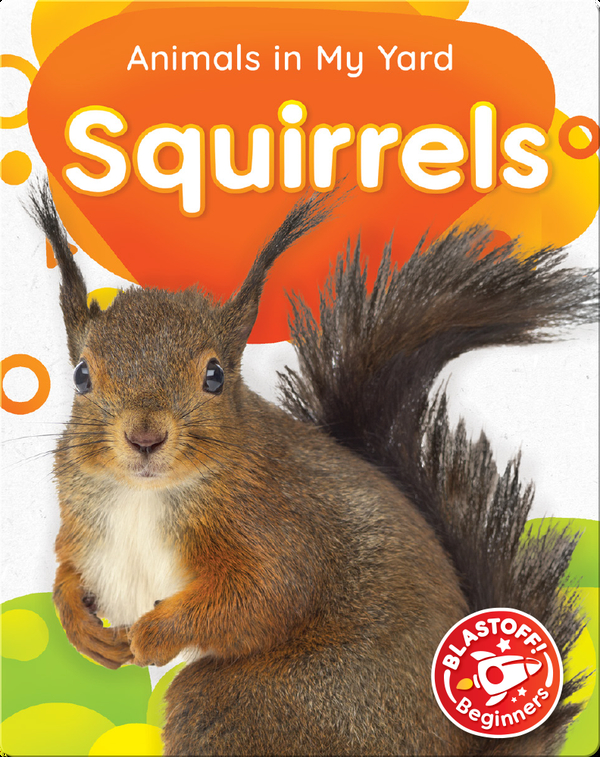Animals in My Yard: Squirrels