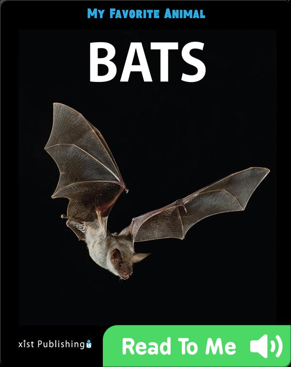 My Favorite Animal: Bats