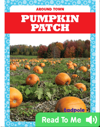 Around Town: Pumpkin Patch