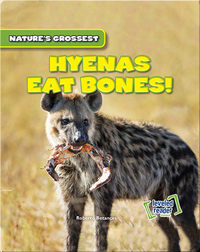 Nature's Grossest: Hyenas Eat Bones!