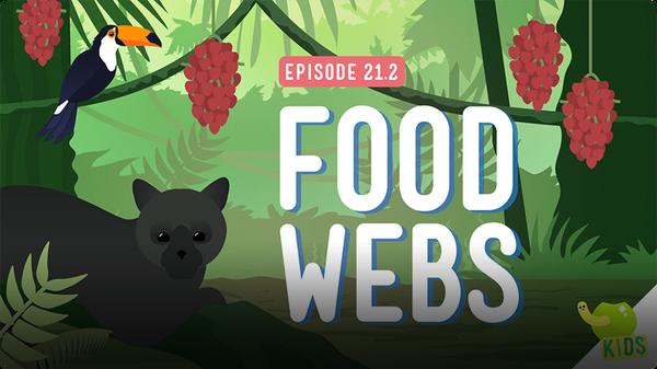 Crash Course Kids: Food Webs