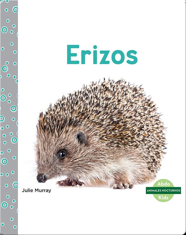 Animales nocturnos: Erizos