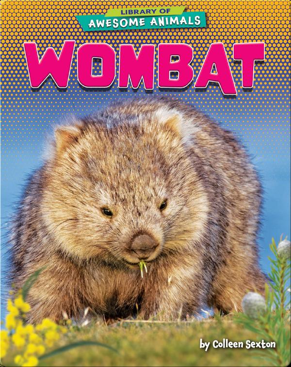 Awesome Animals: Wombat
