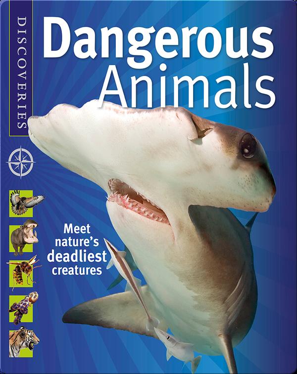 Discoveries: Dangerous Animals