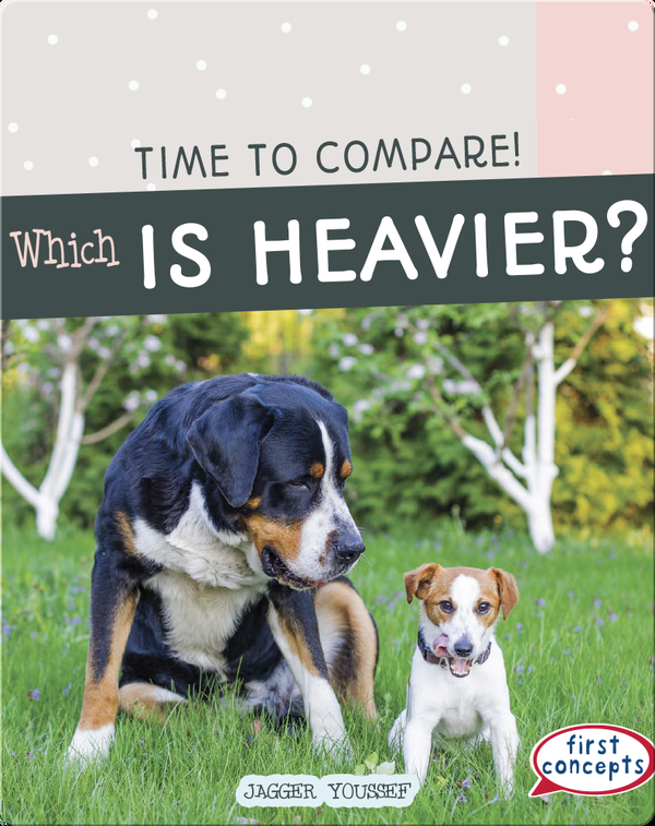 Time to Compare!: Which Is Heavier?