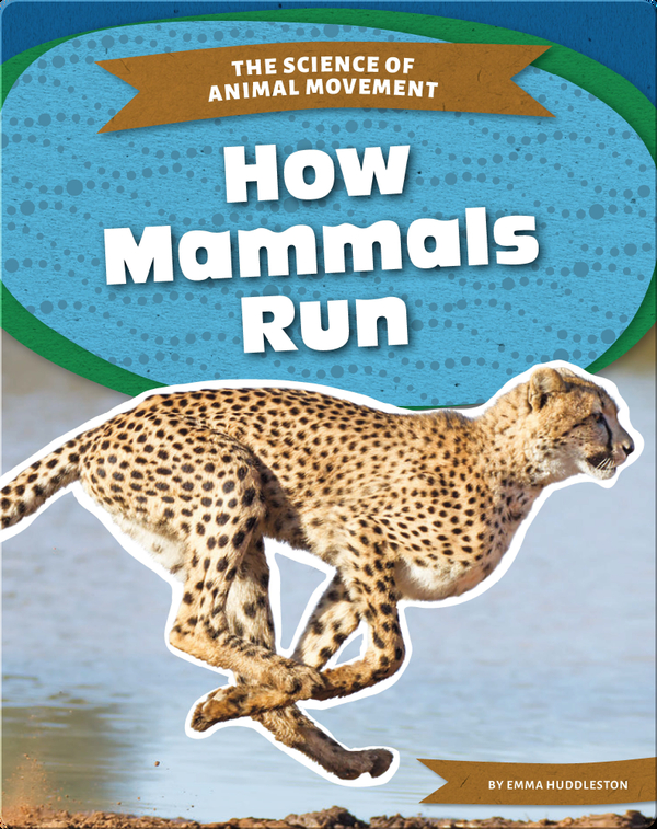 The Science of Animal Movement: How Mammals Run