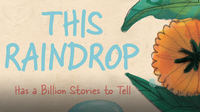 This Raindrop: Has a Billion Stories to Tell