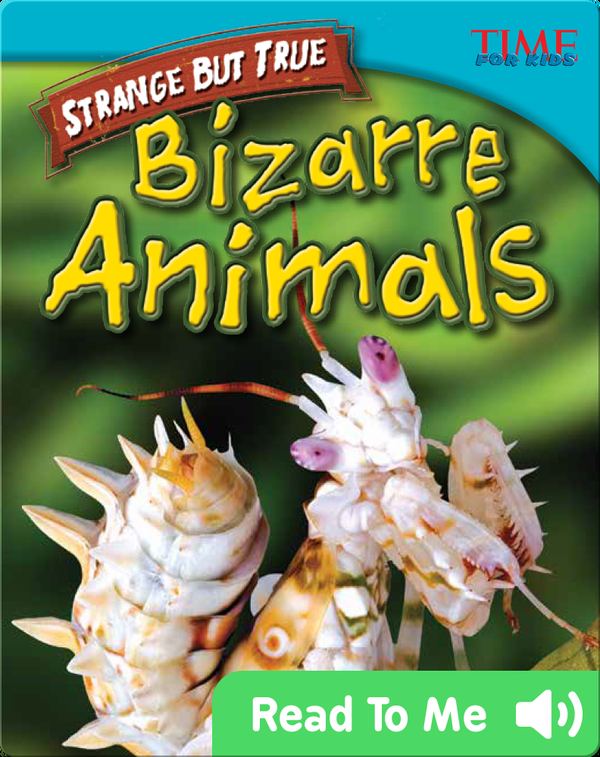 Strange but True: Bizarre Animals