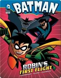 Batman: Robin's First Flight