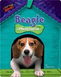 Beagle: A Howling Good Time