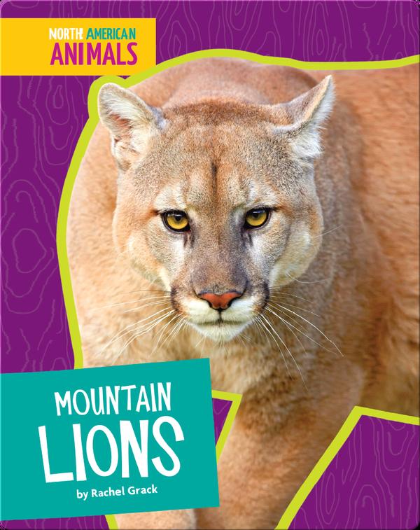 Mountain Lions Children's Book by Rachel Grack   Discover ...
