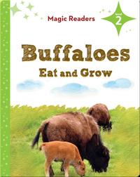 Magic Readers: Buffaloes Eat and Grow