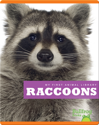 My First Animal Library: Raccoons