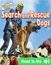 Search-and-Rescue Dogs
