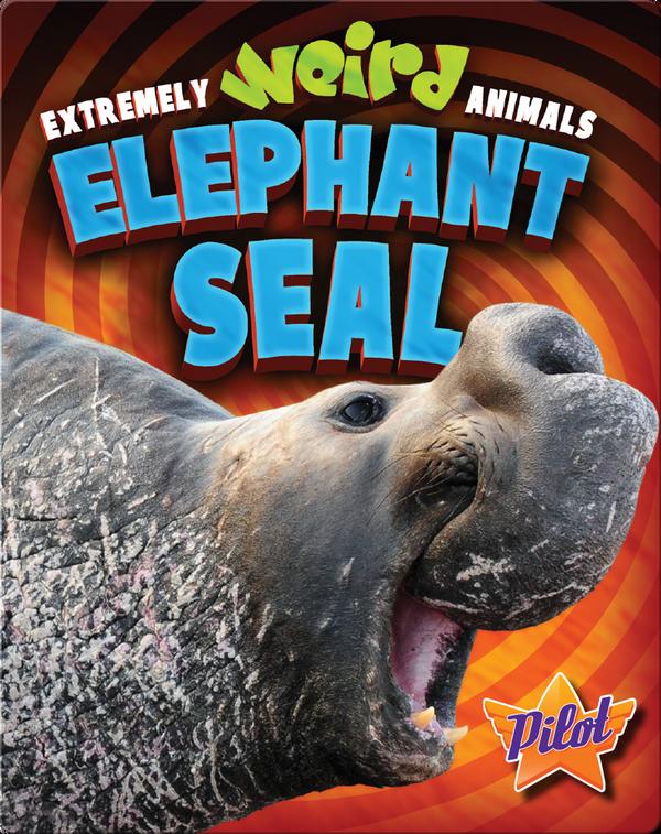 Extremely Weird Animals: Elephant Seal