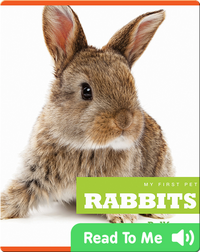 My First Pet: Rabbits