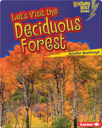 Let's Visit the Deciduous Forest