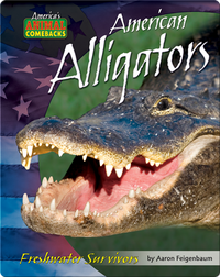 American Alligators: Freshwater Survivors